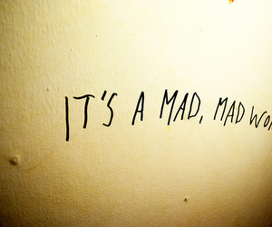 world, mad, and quotes image