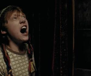 harry potter, prisoner of azkaban, and ron weasley image