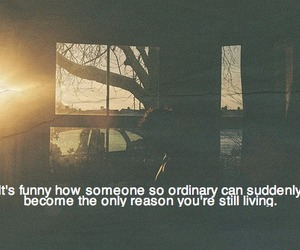 love, ordinary, and live image