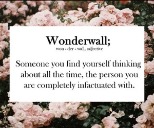 wonderwall, flowers, and quote image