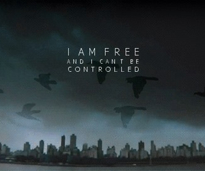 divergent, tris, and free image