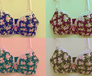 bow, bra, and color image
