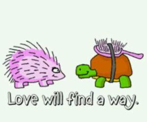 love, turtle, and way image
