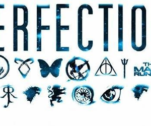 book, perfection, and harry potter image