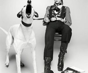 art, david bowie, and terry o'neill image