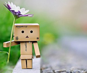 danbo and flower image
