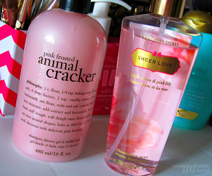 beauty, Victoria's Secret, and sheer love image