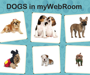 adorable, mywebroom, and cuddly image