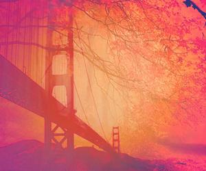 background, tree, and bridge image