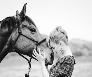 black and white, horse, and photoshoot image