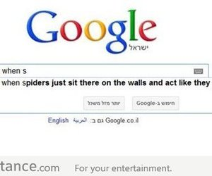 spider, funny, and google image