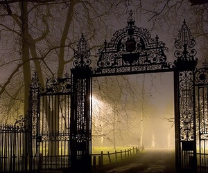 gate and night image