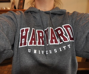 harvard, university, and quality image