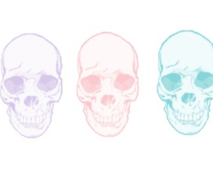 skull, overlay, and transparent image