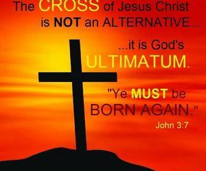 jesus christ trust bible image
