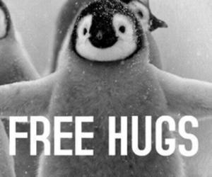 hug, penguin, and cute image