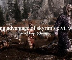 khajiit and skyrim image