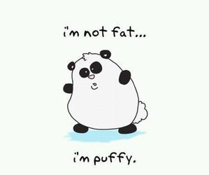 fat and cute image
