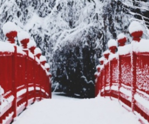 header, nieve, and red image
