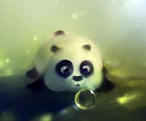 baby panda cute bubble image