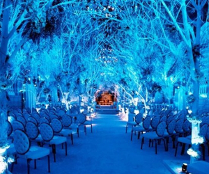 wedding, winter, and blue image