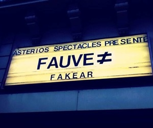 concert, paris, and fauve image
