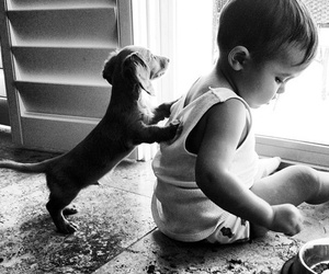 child, doggy, and cute image