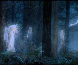 forest, illustration, and LOTR image