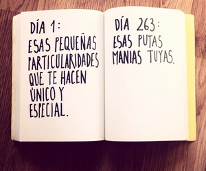 book, mania, and frases image