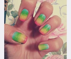 amazing, rainbow, and cute image