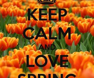 flowers, keep calm, and spring image