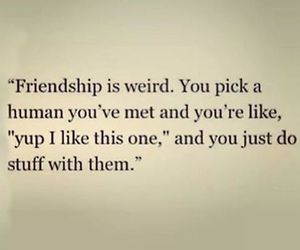 friendship, friends, and quote image