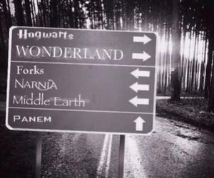 narnia, wonderland, and forks image