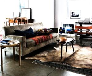 decor and interior design image