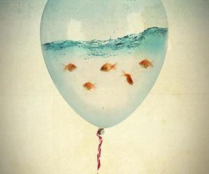 fish, fishes, and hipster image