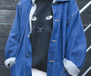 fashion, cat, and clothes image