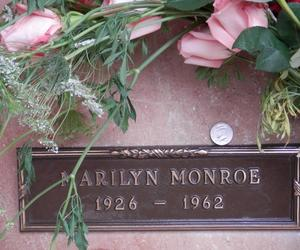 Marilyn Monroe, flowers, and pink image