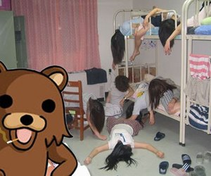 pedo bear, pedobear, and b) image