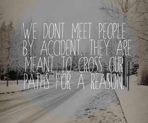 quote, life, and reason image