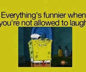 funny, laugh, and spongebob image