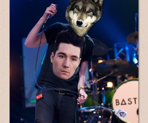 bastille, funny, and wolf image