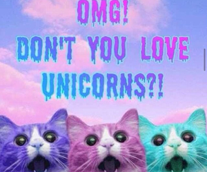 unicorn, cat, and OMG image