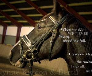 horses, quotes, and love image