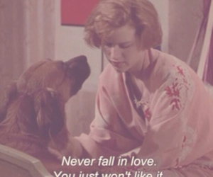 love, quotes, and dog image
