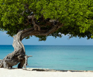 beachfront, Caribbean, and mexico image
