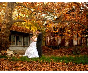 autumn, couple, and wedding image