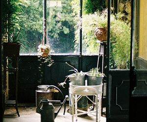 green, plants, and garden image