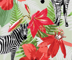 flowers, wallpaper, and zebra image