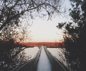 beautiful, bridge, and scenery image