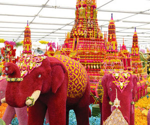 colorful, elephant, and flowers image